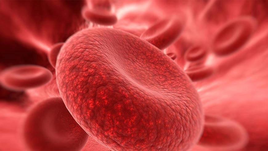 kordon kanı nedir ve nasıl saklanır